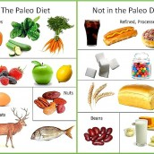 The Basics of the Paleo Diet